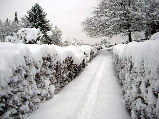 Sieben Hügel im Schnee / minimlwork