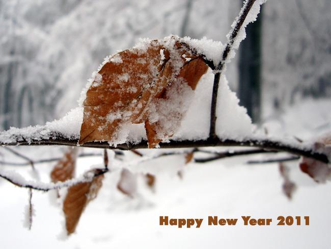 Happy New Year 2011 / Foto: minimlwork
