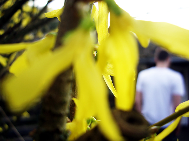 Frühling: 7hügel / Foto: minimlwork