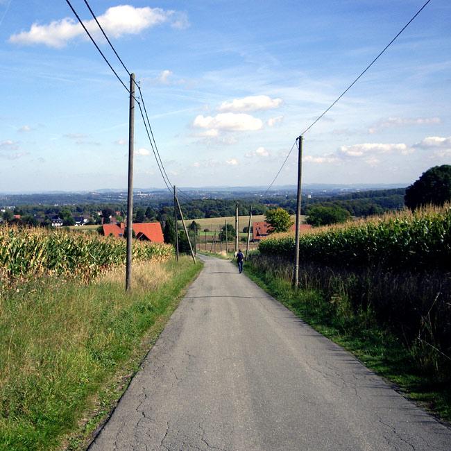 Spätsommerspaziergang Teutoburger Wald / Foto: minimlwork